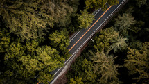 aerial view over a road through a forest