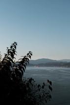 view of a shoreline