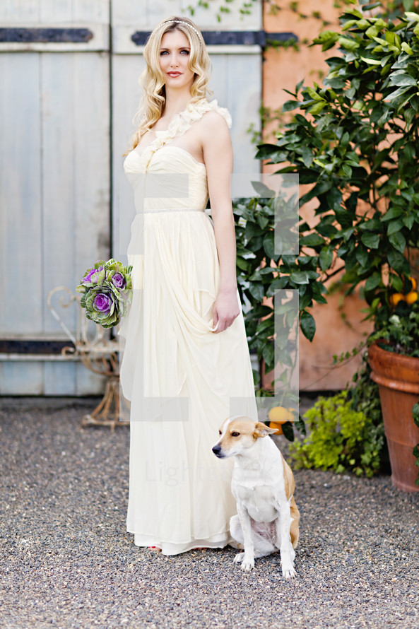 dog sitting next to a bride wedding fashion