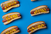 Hot dogs and buns drizzled with mustard on a bright blue background.