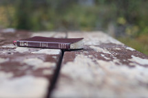 Bible on a picnic table