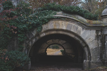 ivy and tunnel