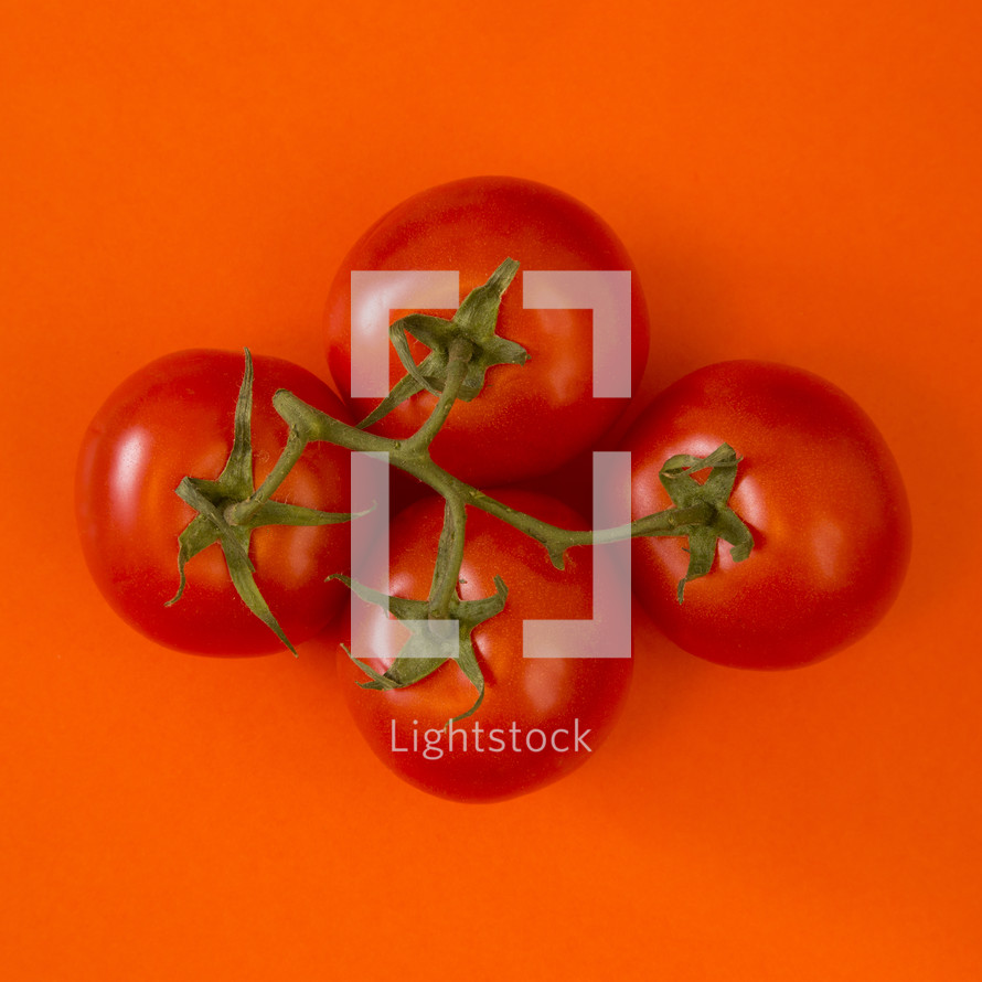 red tomatoes on red