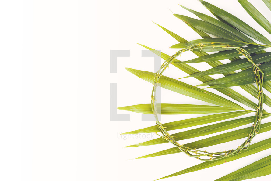 crown of thorns and palm fronds