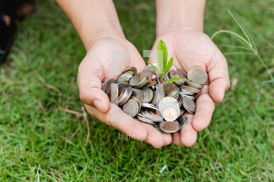 cupped hands with a sprout and coins