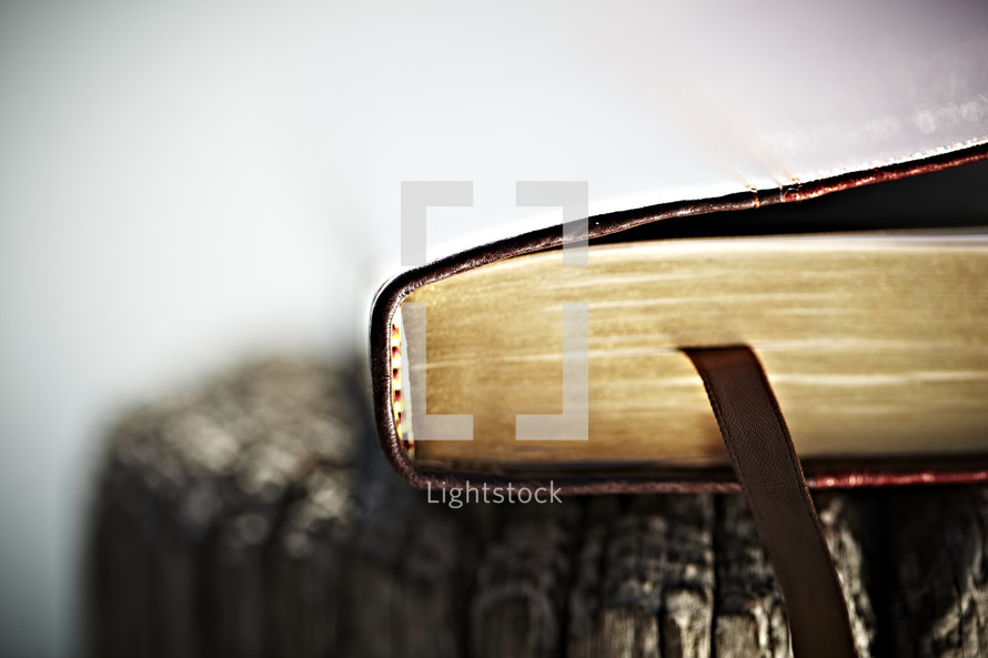 The edge and bookmark of a Bible
