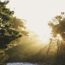 sunlight over a river