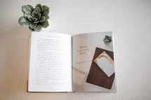 pages of an open book and succulent plant