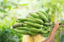a man carrying bananas