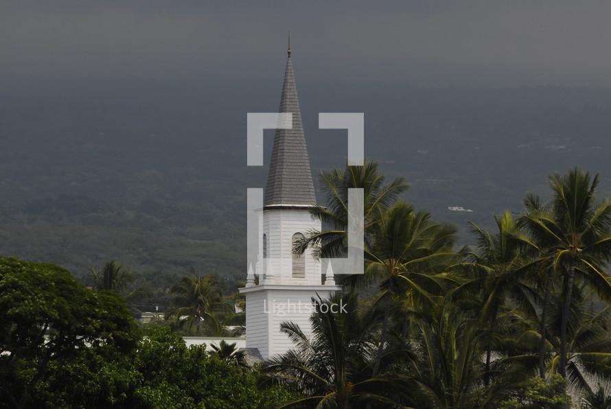 A church steeple among palm trees.