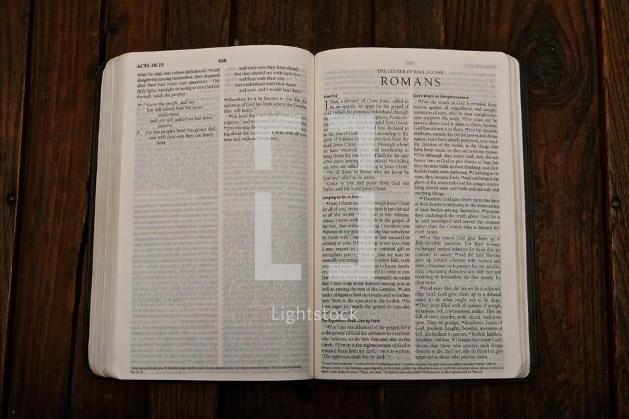 Scripture Titles - Romans