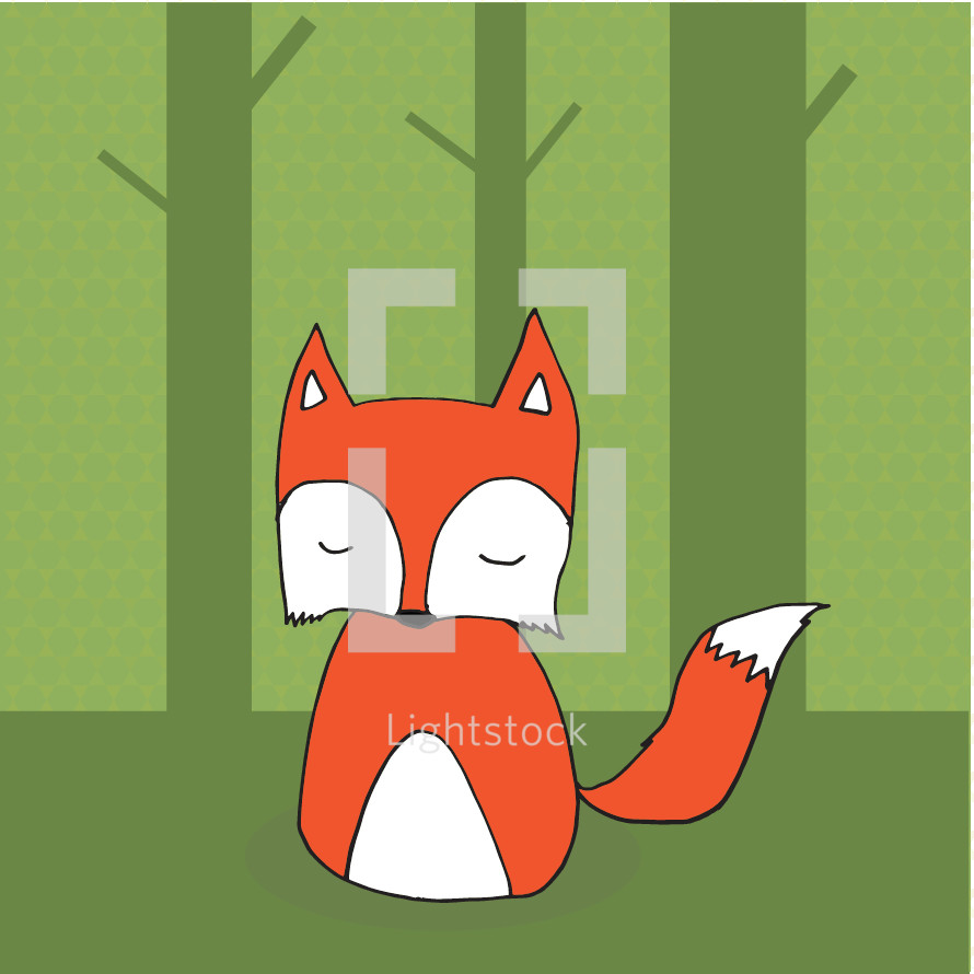 fox in the woods