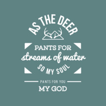 As the deer pants for streams of water, so my soul pants for you my God