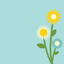 flowers cluster illustration.