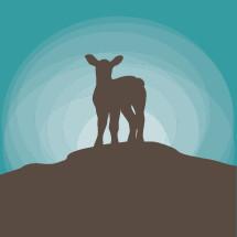 lamb silhouette