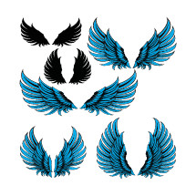 wings set of six with different forms silhouette