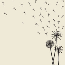 vector illustration of floating dandelion seeds blowing in the wind.