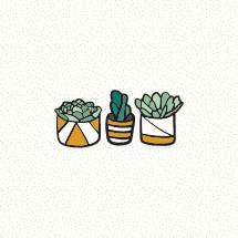 succulent house plants icons