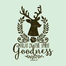 Fruit of the spirit Goodness, Galatians 5:22