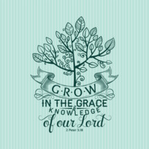 Grow in the grace and knowledge of our Lord 2 Peter 3:18