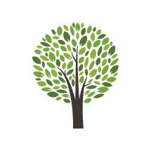 tree with leaves illustration