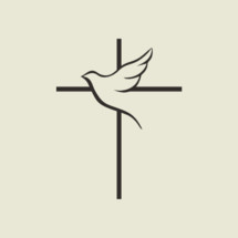 cross and dove icon