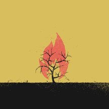 burning bush illustration.
