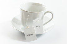 tea cup with tea bags with words why not? and why?