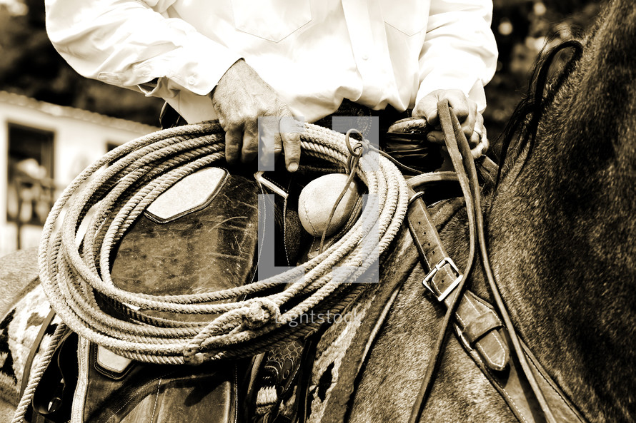 An authentic working cowboy is riding and preparing to use his rope during the course of his job - sepia tint added for vintage look and feel.  This image conveys old fashioned values, tradition, work ethic, and/or rural demographics.