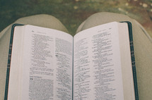 Open Bible on a lap. Isaiah 40 in focus.