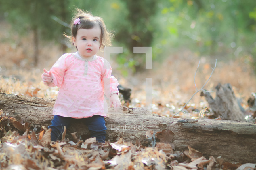 toddler girl sitting on a fallen tree in fall leaves