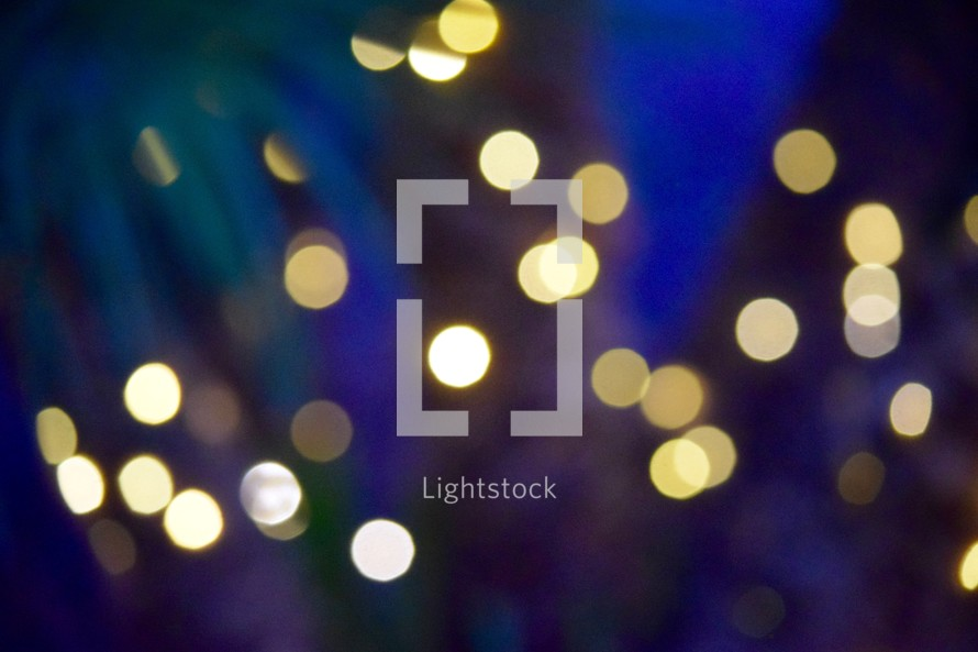 bokeh string of lights around a palm tree on a summer night