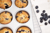 tin of blueberry muffins