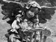 A statue of an Angel and a bird fellowship together at a pet cemetery reminding us that death is not the end or final chapter but a passing from this life to the eternal life where there is no more death, no more crying, no more sickness and no more pain. This photograph was taken at a pet cemetery, the first time I have ever seen one at it is an eye opening experience to see such love and devotion and sadness all in one place where dearly loved pets are departed but never forgotten. Scripture tells us that there are animals in Heaven and I cannot help but feel we will see our loved ones again not just human but our animal friends that Jesus loves and created for the purpose of helping us in this life. Many of us spend a lifetime grieving over our pets and lost loved ones but the good news is we will see them again in Heaven if we are saved and belong to Christ.