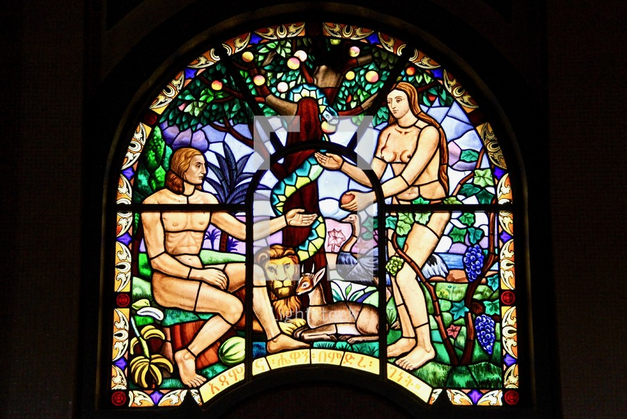 Adam and Eve Stained glass window