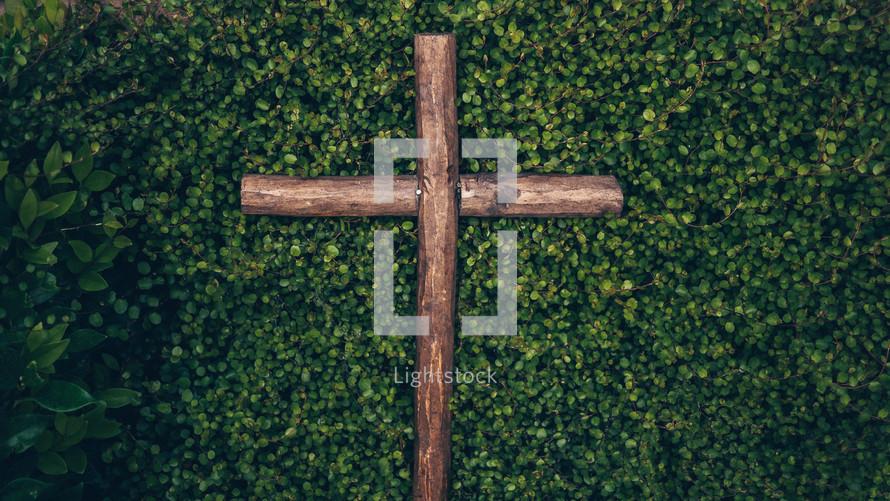 wooden cross in a bush