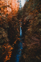 waterfall in a fall forest