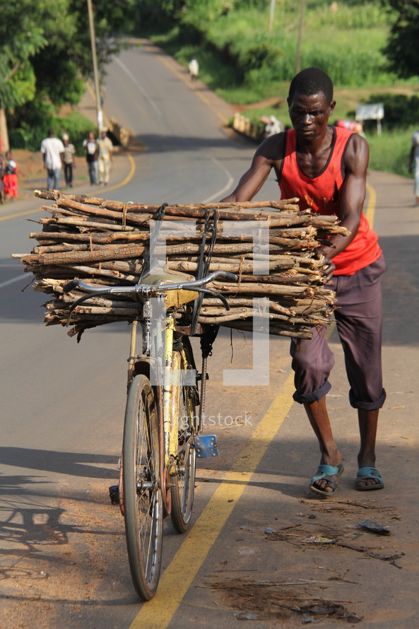 a man carrying sticks on a bicycle