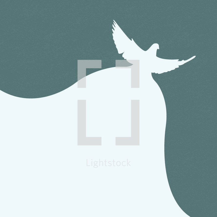 abstract flying dove illustration.