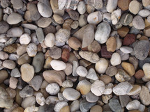 Many different colors and shapes of river rocks.