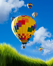 rising hot air balloons in a blue sky and green grass