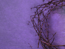 crown of thorns on a purple background