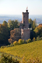 towers of a fortified castle in the middle of a vineyard in autumn.