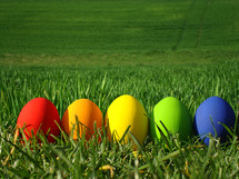 multicolored eggs in the grass,  egg, eggs, multicolored, Easter, gras, eggshell, blown out, paint, painted, colorful, colourful, colour, natural, nature, spring, colored, color, food, eat, eating, chicken, hen, chickens, hens, pullets, symbol, decoration, green, sun, sunshine, bright, light, sunlight, meadow, outdoor, shell, egg shell, hide, seek, search, find, hunt, egg hunt, hiding, seeking, finding, hunting, detect, detecting, discover, pick, gather, collect, red, yellow, orange, purple, blue, lilac, plant, vegetation, rainbow