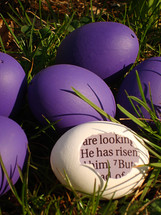 A white eggshell with a piece of the bible inside saying: HE HAS RISEN! between purple eggs in the grass.