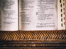 Chinese-English Bible