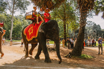 riding an elephant in Cambodia