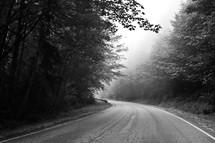 curve along a rural road