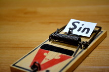 word sin on mousetrap