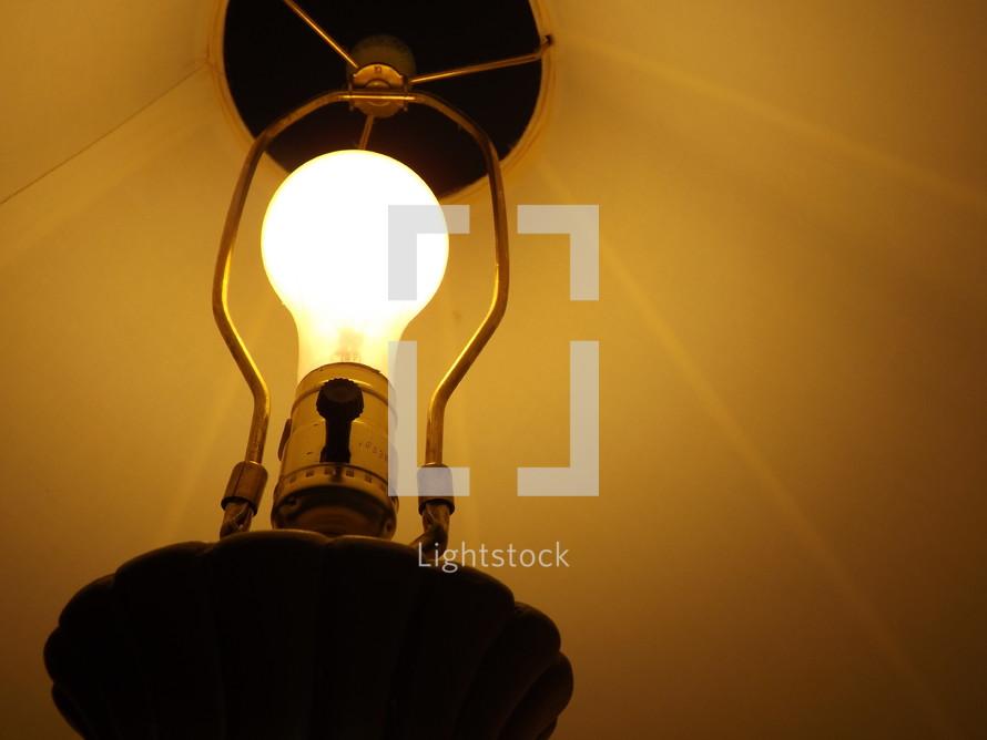light bulb and lamp shade